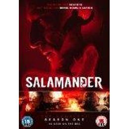 Salamander: The Complete Season One [DVD] [2012]